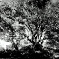 http://archivelab.co.kr/kmemory/GM00034239.jpg