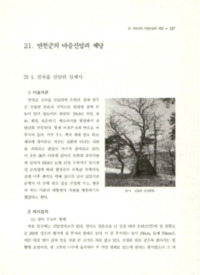 http://archivelab.co.kr/kmemory/GM00026083.pdf