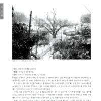 http://archivelab.co.kr/kmemory/GM00020036.pdf