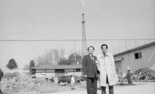 대성동 자유의 마을 초등학교 제12회 졸업식  #926