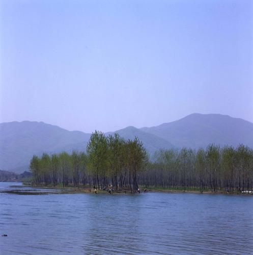 강 풍경  #13624