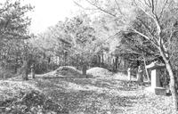 여유길 묘소 전경