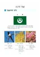 내고장 성남 1996