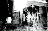 지레골마을 김향래가옥