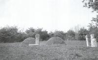 정치화 묘소 전경