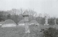 안윤제 묘소 전경