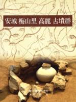 [안성 매산리 고려 고분군] : 安城 梅山里 高麗 古墳群