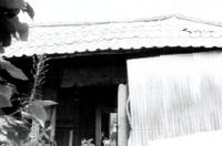 능곡마을 김종성가옥 #1