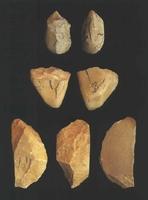 강내리 선사유적 구석기 유물