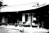 서랑마을 김구연가옥 #1