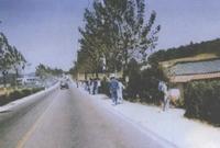 1981년 개청 당시 학온동사무소 앞 도로