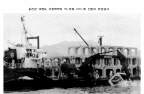 옹진군 대청도 서방해역의 어·조류 서식 및 산란지 조성공사