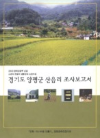 경기도 양평군 산음리 조사보고서