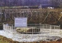 계수동 지석묘 원경