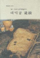 용인 죽전택지개발지구내 대덕골 유적